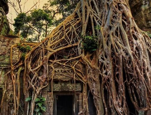 Cambodia – multe motive pentru care merita vizitata